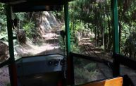 On the Driving Creek Railway